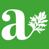 Artemisia400x400